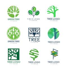 green tree logo original design set of vector image vector image