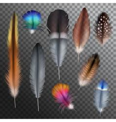 Feathers Realistic Transparent Set vector