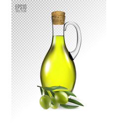 olive branch and olive oil bottle isolated on vector image