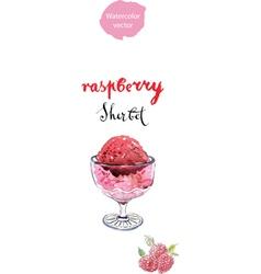 raspberry sherbet vector image