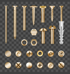 realistic golden fasteners transparent set vector image
