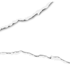 ripped wide hole in a sheet of white paper vector image