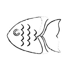 Sea fish icon vector