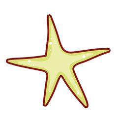 star doodle isolated vector image