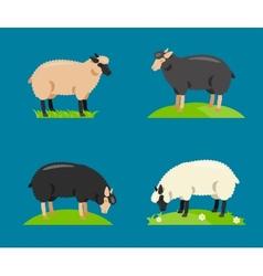 A cartoon sheep vector