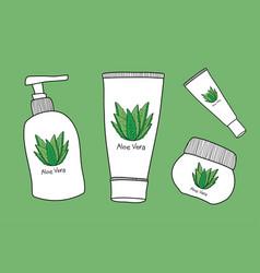 aloe vera skin care vector image
