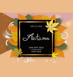 Autumn banner with hand writing text and leaf vector