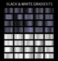 black and white gradients silver metallic vector image