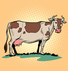 Dairy milk cow with udder farm animal vector