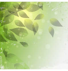 grunge leaf background vector image