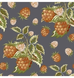 Hand painted pattern of pastel brown raspberry on vector