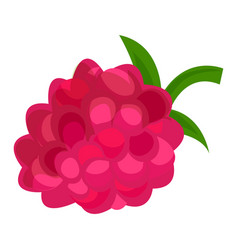 raspberry icon cartoon style vector image