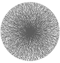 Abstract Curvy Lines From Center vector image