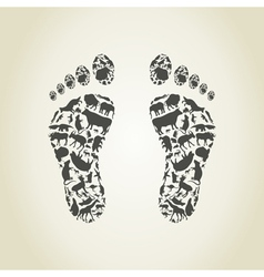 Foot an animal vector image vector image