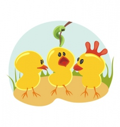 Three little chickens vector