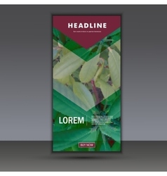 Flyer with leaf background vector image