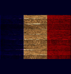 french flag painted on old wood plank background vector image