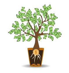 Money tree growing from a coin root green cash vector