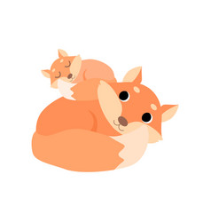 Mother and baby fox cute forest animal family vector