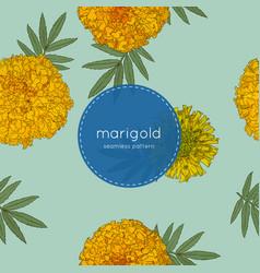 orange marigolds hand draw sketch vector image