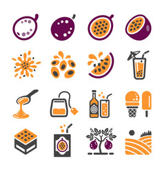 passion fruit icon set vector image
