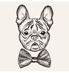 Sketch French Bulldog with bow tie Hand drawn dog vector image