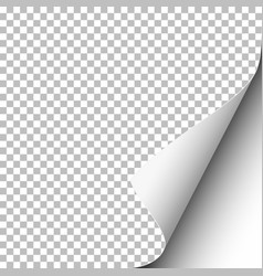 transparent paper with lower right curl vector image