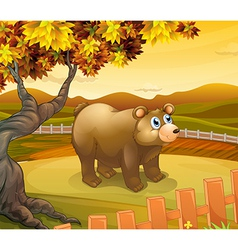 A big bear inside the fence vector