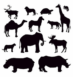 african animal silhouette vector image