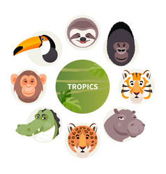cartoon animals tropics vector image
