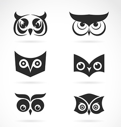 Image of an owl face design on white background vector