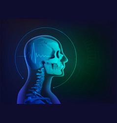 Skull xray vector