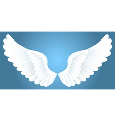 white wings vector image vector image