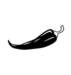 chilli pepper icon vector image