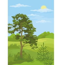 Summer landscape with trees and blue sky vector image