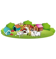 A group of dogs gathering in front of their house vector image vector image