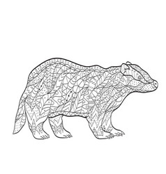 coloring european badger for adults vector image vector image