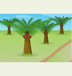 African oil palm field vector