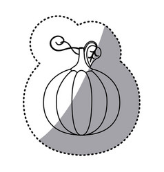 figure pumpkin vegetable icon vector image