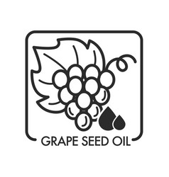 grape seed oil monochrome sketch outline isolated vector image