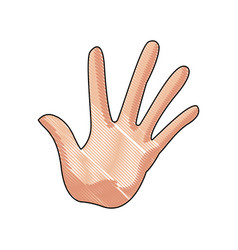 hand man palm showing five finger gesture image vector image
