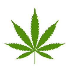 Marijuana or cannabis leaf icon logo vector