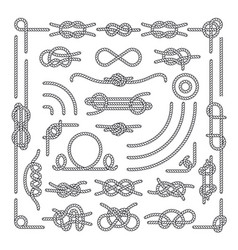 Nautical rope knots decorative vintage vector