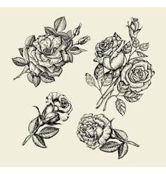 Flowers Hand drawn sketch flower rose dogrose vector image vector image