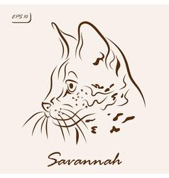 Savannah cat vector