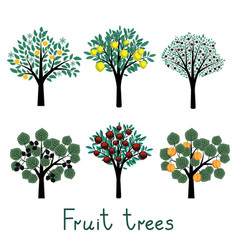 Fruit trees set vector image vector image