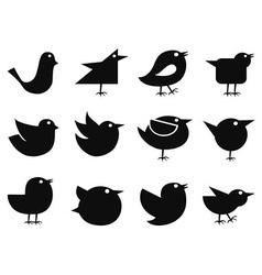 social bird icons vector image