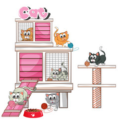 cats playing in cage vector image