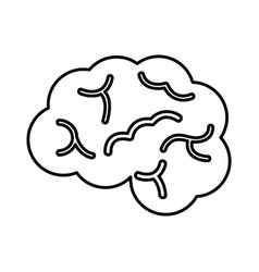 brain organ human icon vector image