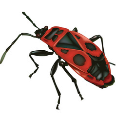 firebug vector image